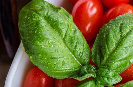 סלט עגבניות שרי וביזליקום